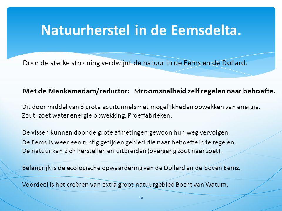 Natuurherstel in de Eemsdelta.