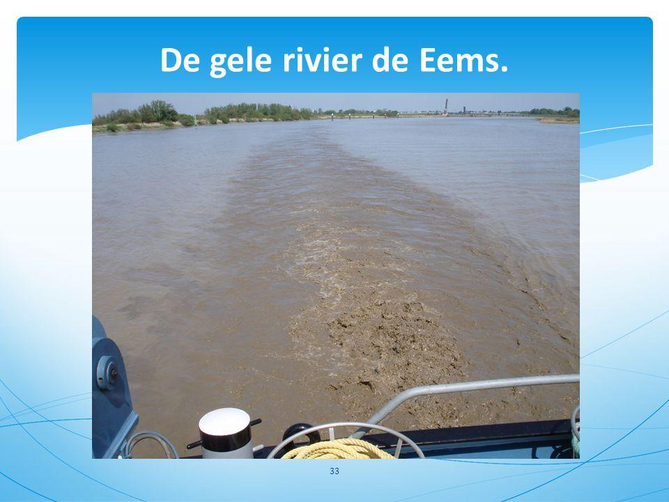 De gele rivier de Eems.