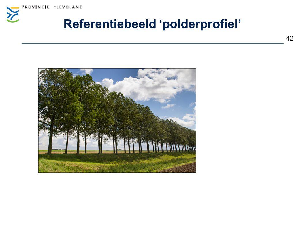 Referentiebeeld 'polderprofiel'