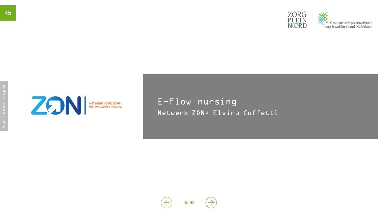 E-Flow nursing Netwerk ZON: Elvira Coffetti