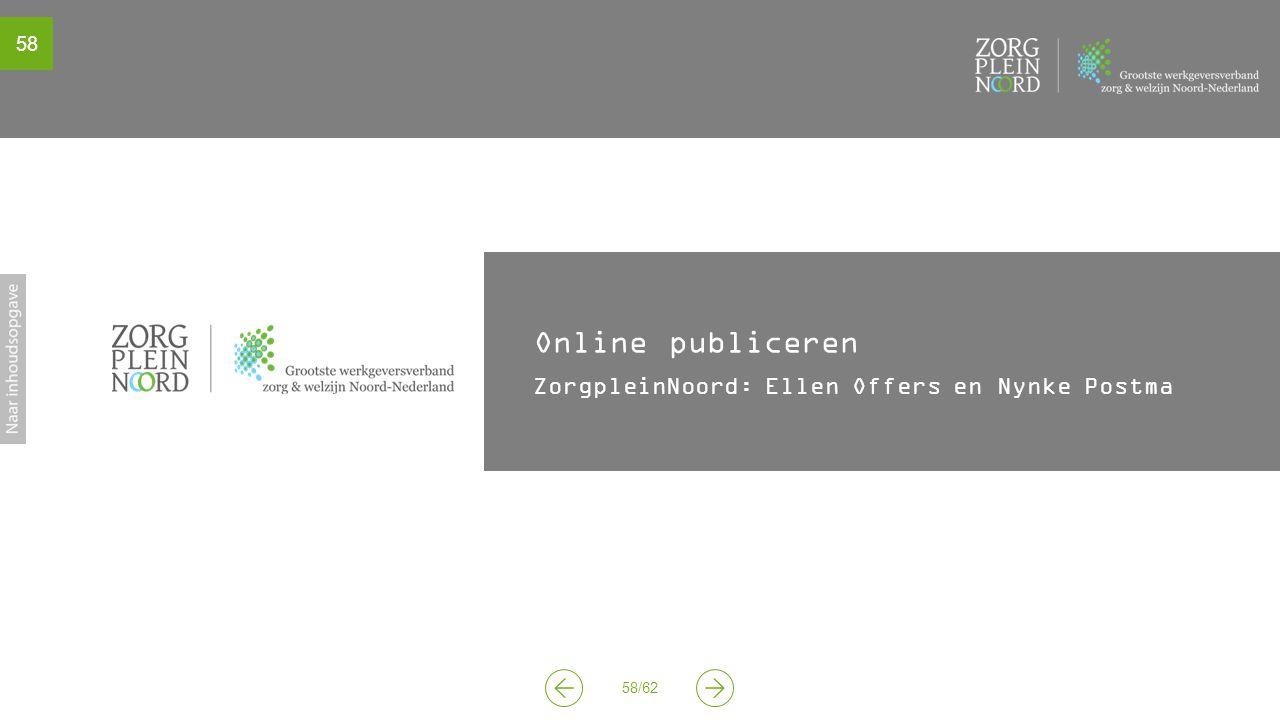 Online publiceren ZorgpleinNoord: Ellen Offers en Nynke Postma