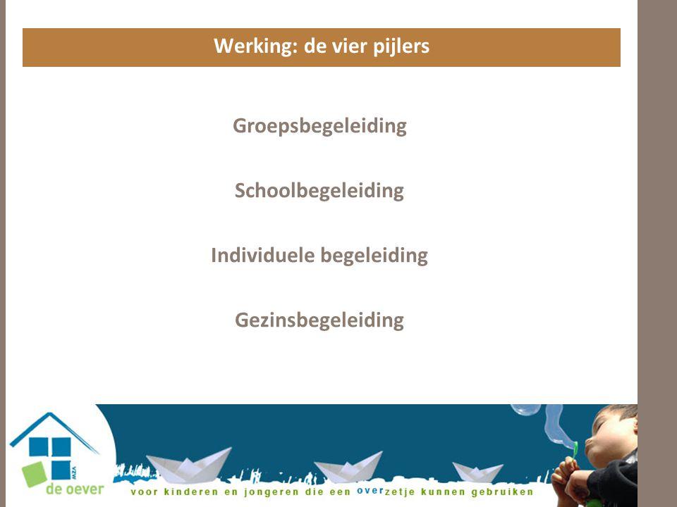 Werking: de vier pijlers Individuele begeleiding