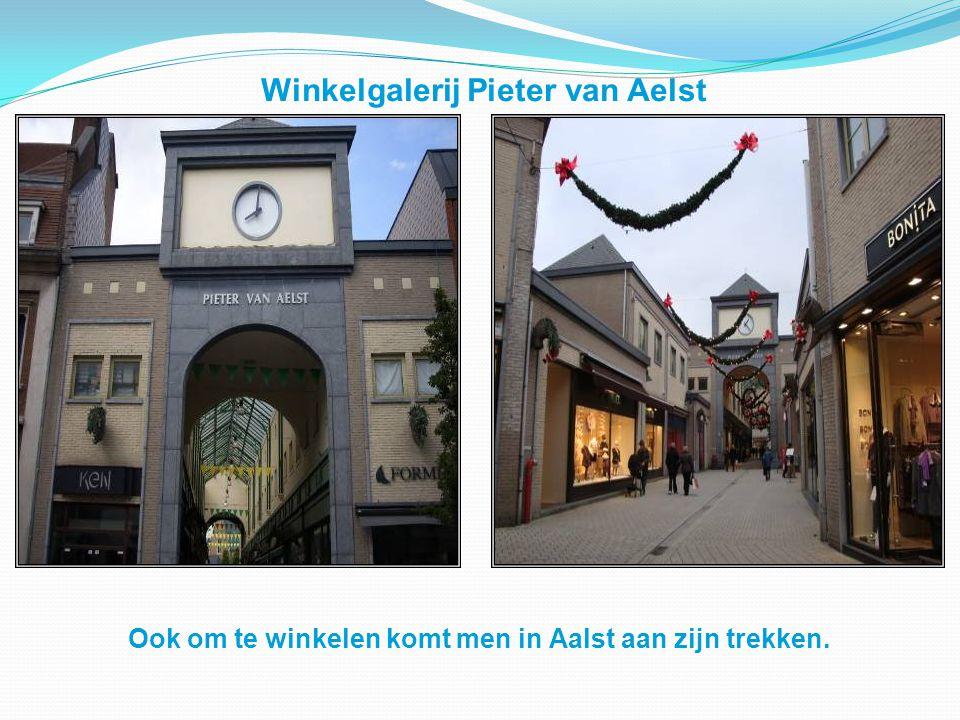 Winkelgalerij Pieter van Aelst