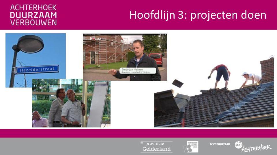 Hoofdlijn 3: projecten doen