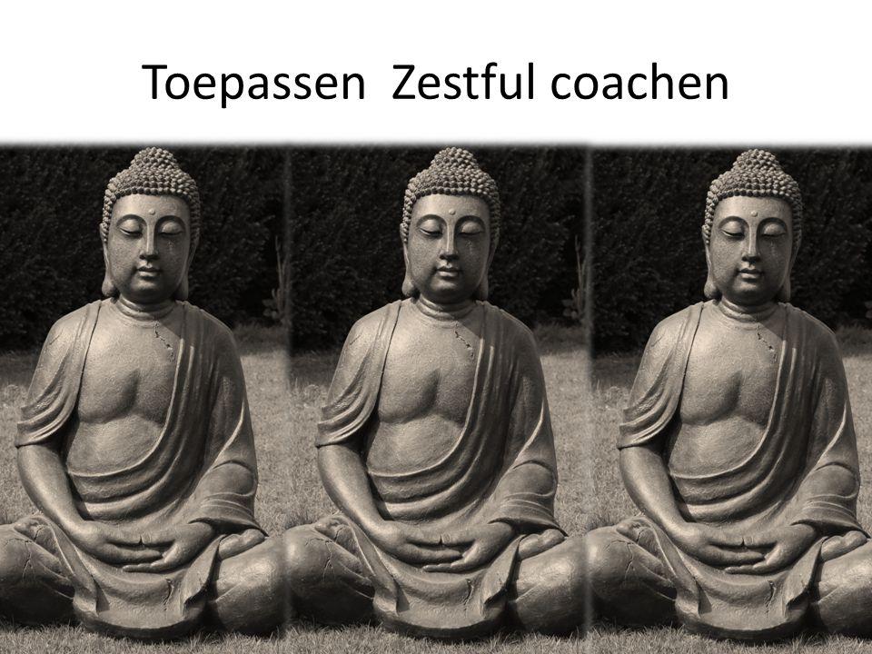 Toepassen Zestful coachen
