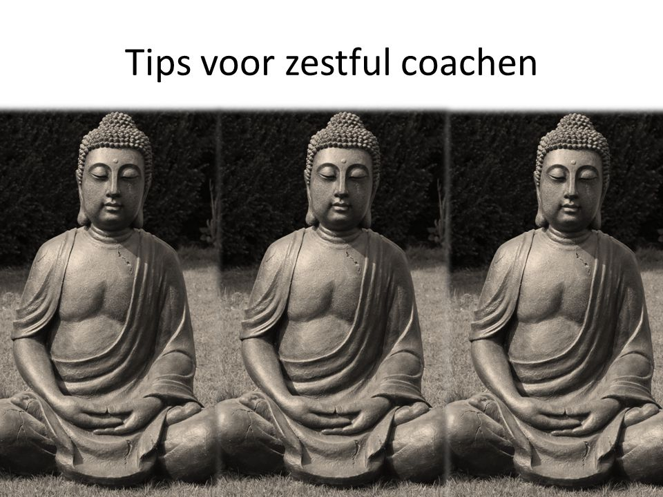 Tips voor zestful coachen