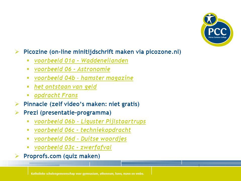 Picozine (on-line minitijdschrift maken via picozone.nl)