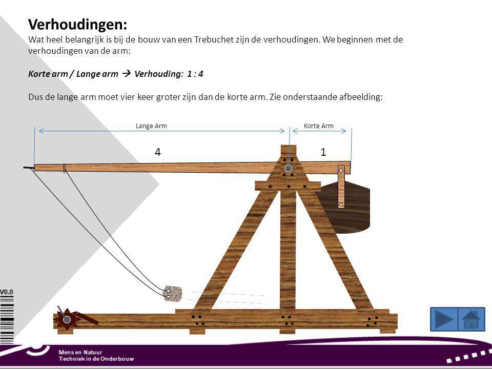 Verhoudingen: Wat heel belangrijk is bij de bouw van een Trebuchet zijn de verhoudingen. We beginnen met de verhoudingen van de arm: