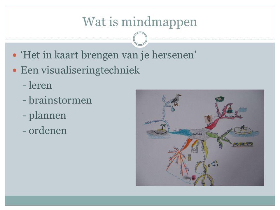 Wat is mindmappen 'Het in kaart brengen van je hersenen'