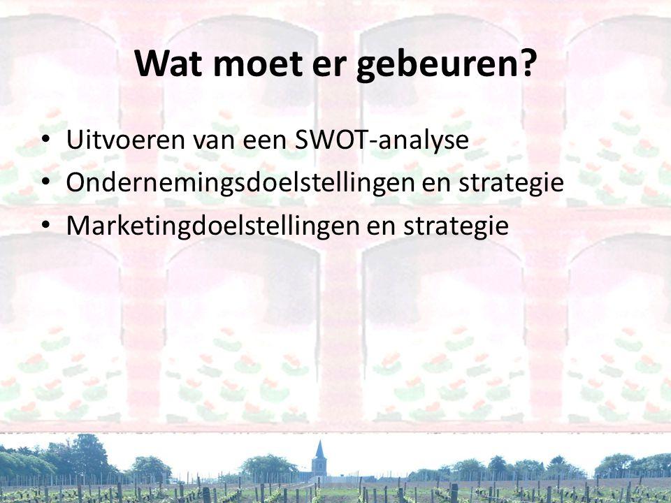 Wat moet er gebeuren Uitvoeren van een SWOT-analyse