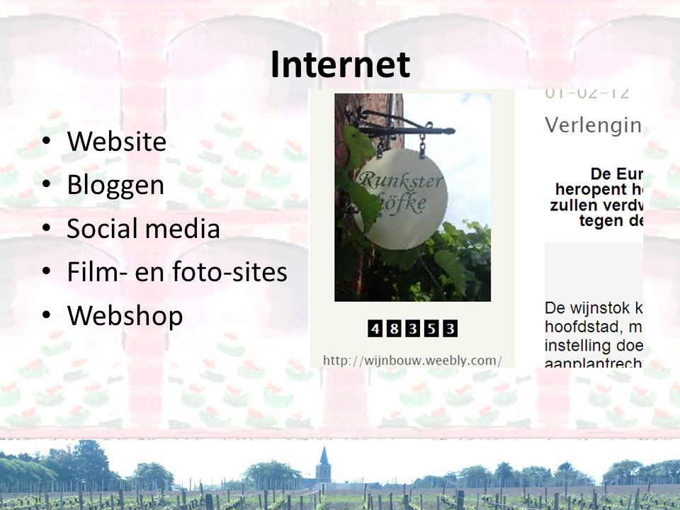 Internet Website Bloggen Social media Film- en foto-sites Webshop