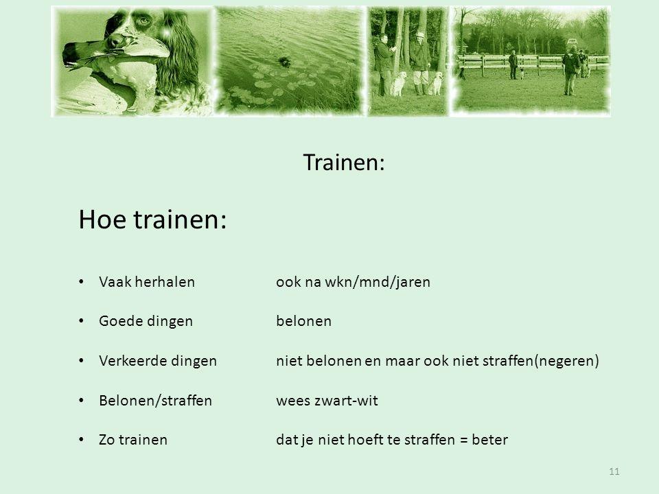 Inschrijfavond Hoe trainen: Trainen: