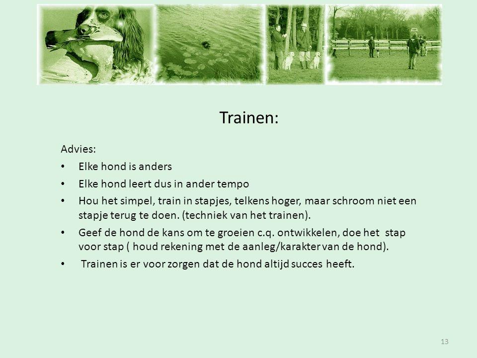 Inschrijfavond Trainen: Advies: Elke hond is anders