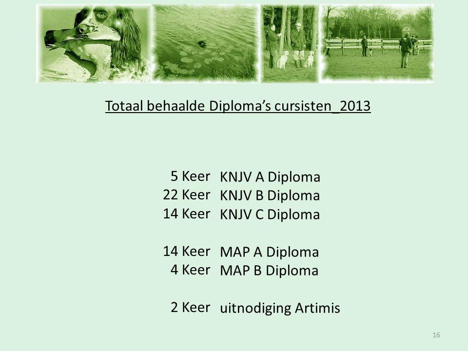 Totaal behaalde Diploma's cursisten_2013