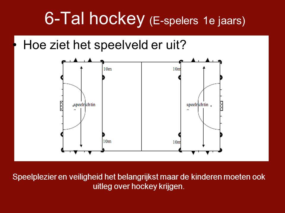 6-Tal hockey (E-spelers 1e jaars)