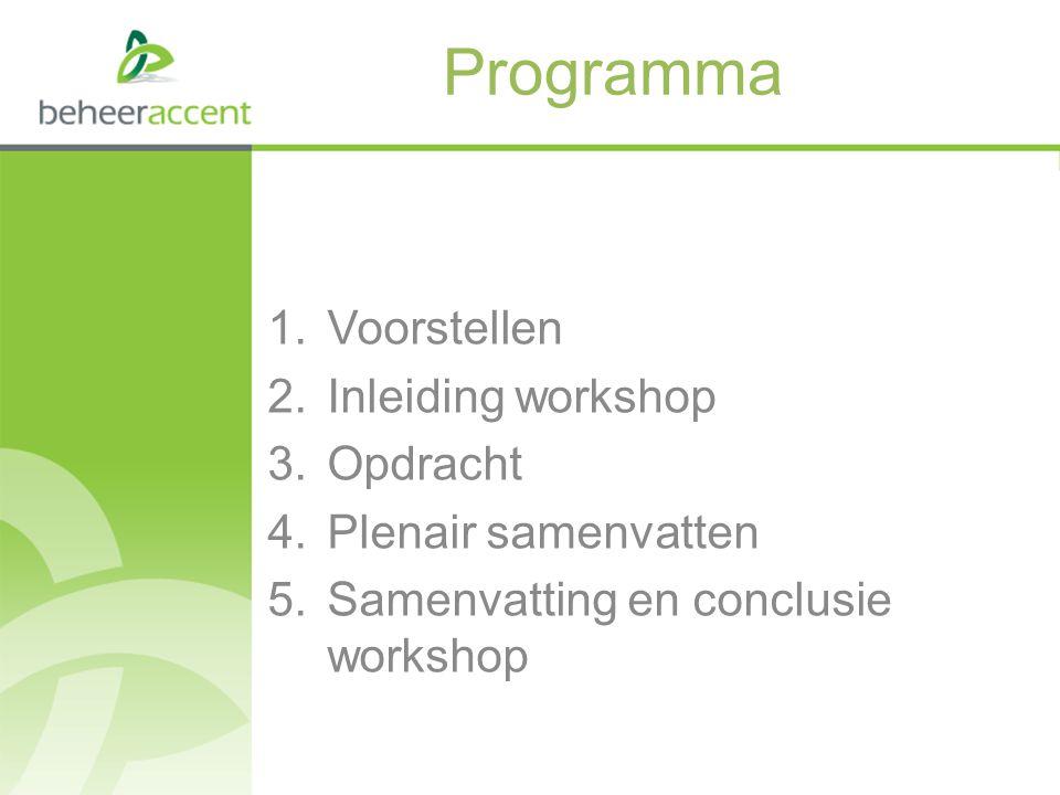 Programma Voorstellen Inleiding workshop Opdracht Plenair samenvatten