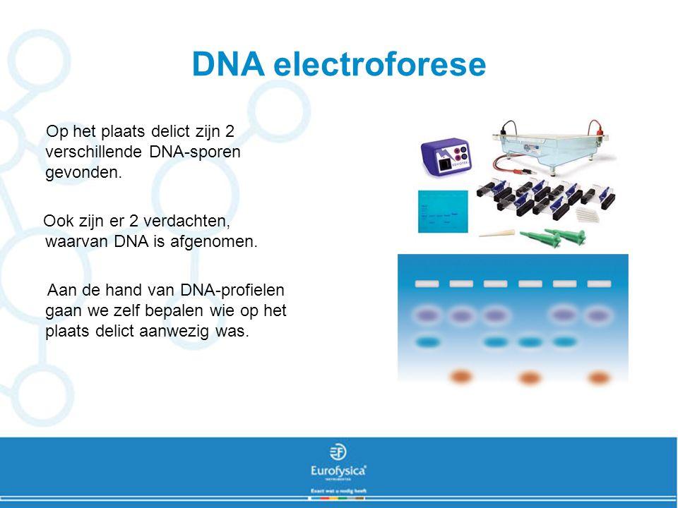 DNA electroforese Op het plaats delict zijn 2 verschillende DNA-sporen gevonden. Ook zijn er 2 verdachten, waarvan DNA is afgenomen.