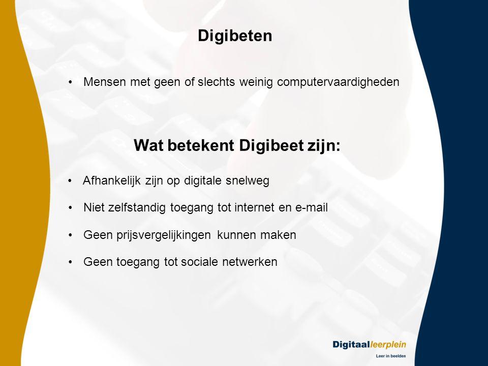 Wat betekent Digibeet zijn: