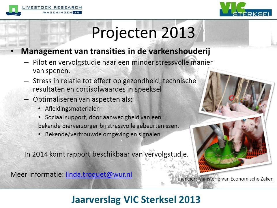 Projecten 2013 Management van transities in de varkenshouderij