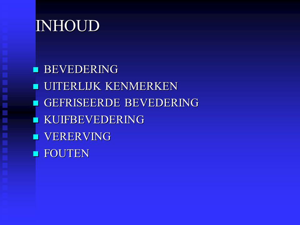 INHOUD BEVEDERING UITERLIJK KENMERKEN GEFRISEERDE BEVEDERING KUIFBEVEDERING VERERVING FOUTEN