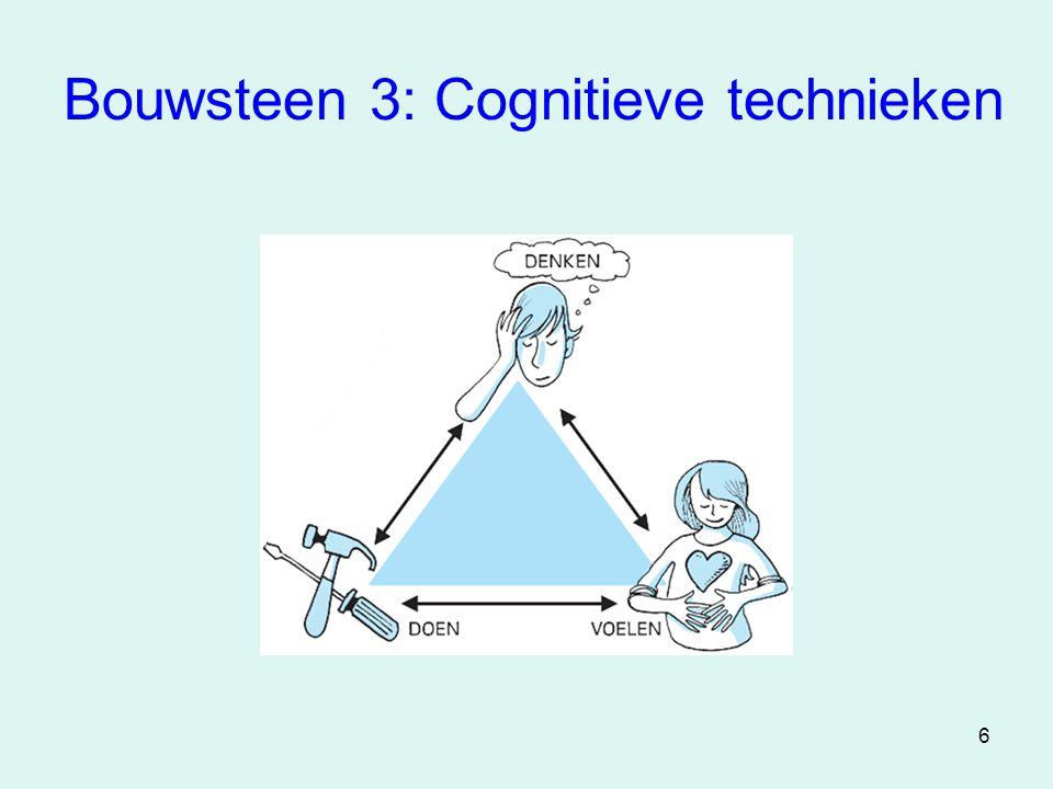 Bouwsteen 3: Cognitieve technieken