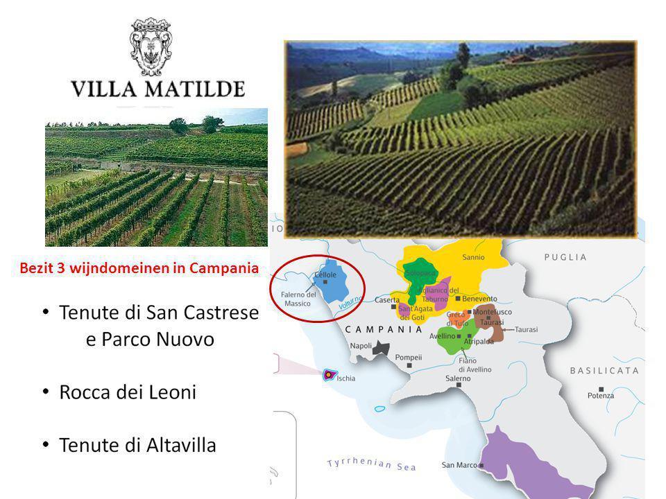 Bezit 3 wijndomeinen in Campania