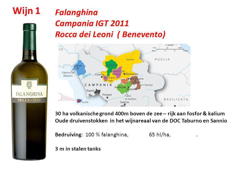 Wijn 1 Falanghina Campania IGT 2011 Rocca dei Leoni ( Benevento)