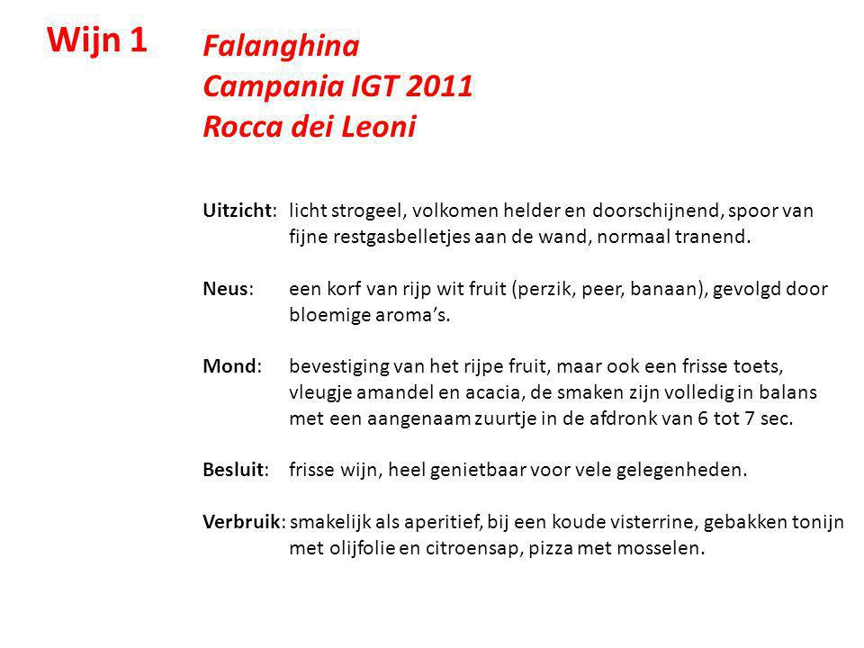 Wijn 1 Falanghina Campania IGT 2011 Rocca dei Leoni