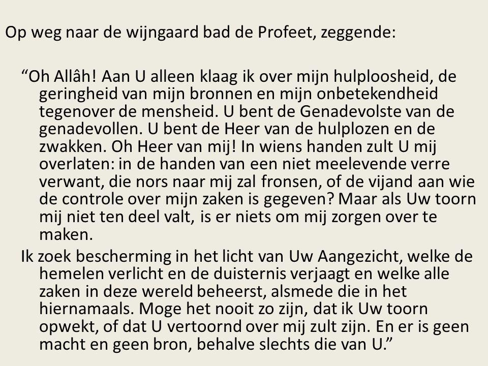 Op weg naar de wijngaard bad de Profeet, zeggende: