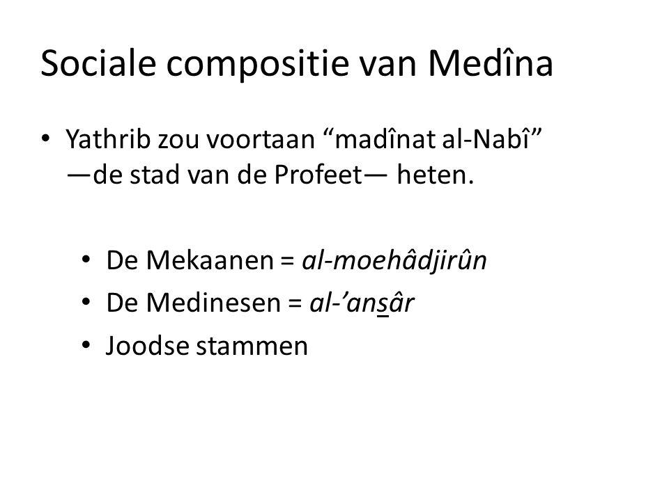 Sociale compositie van Medîna