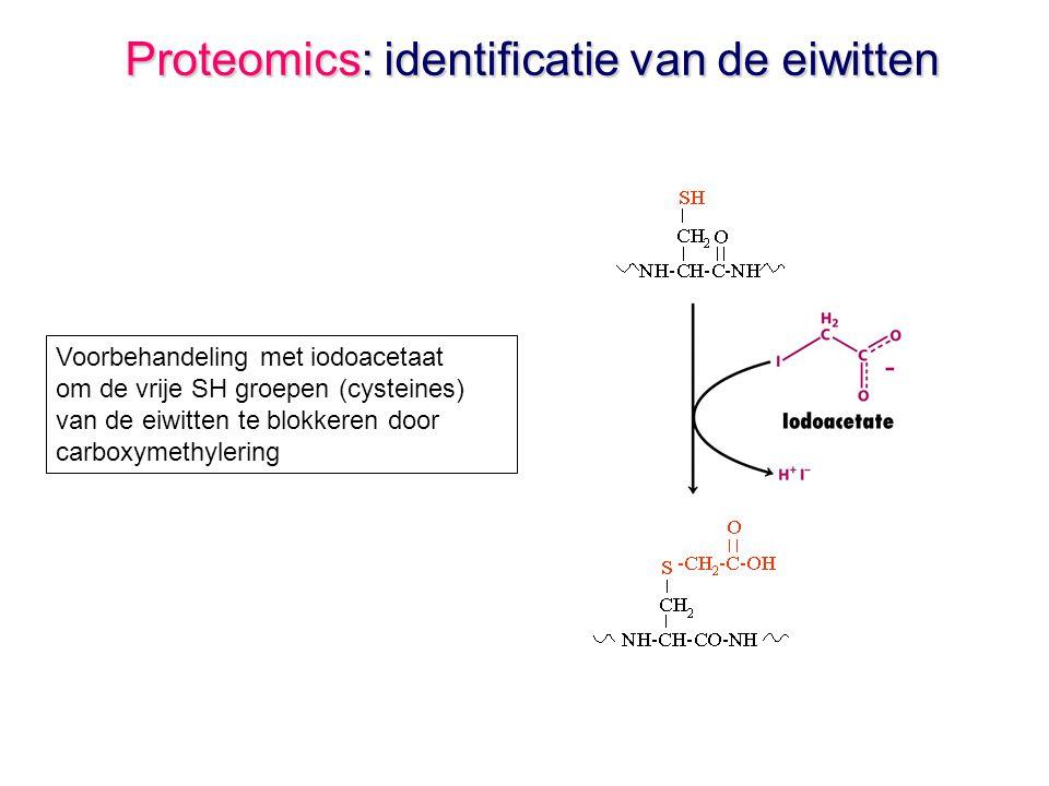 Proteomics: identificatie van de eiwitten