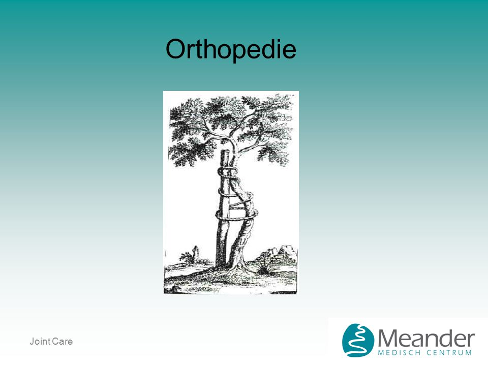 Orthopedie Joint Care