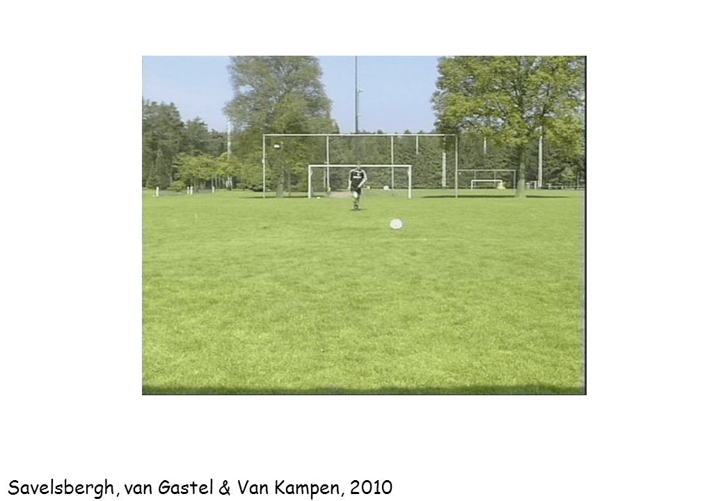 Savelsbergh, van Gastel & Van Kampen, 2010