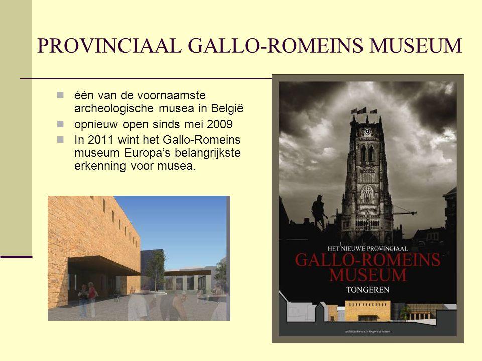 PROVINCIAAL GALLO-ROMEINS MUSEUM