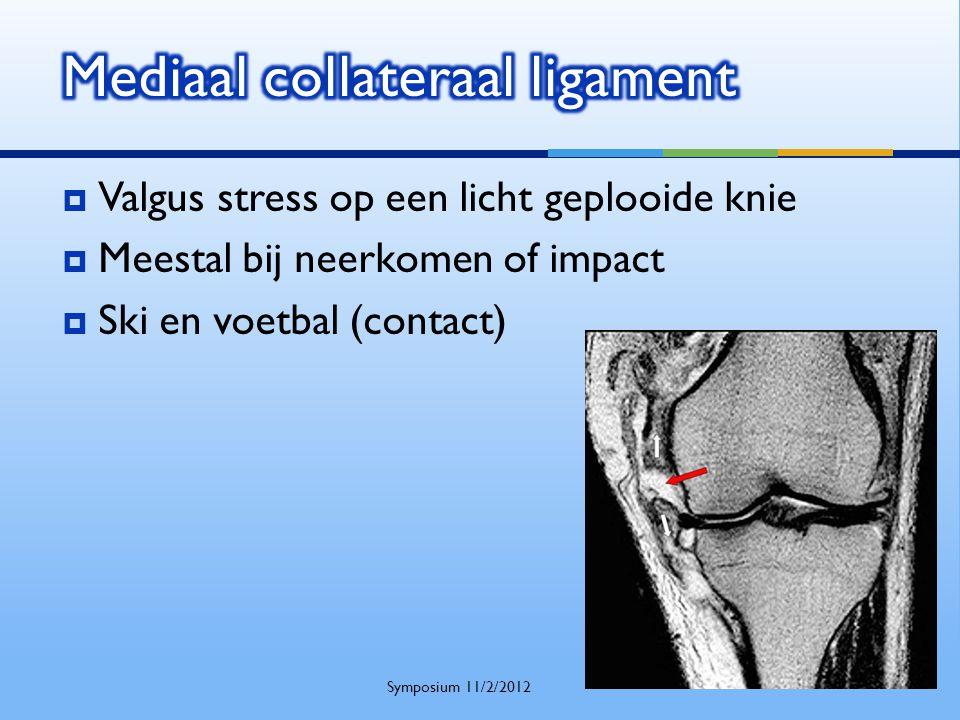 Mediaal collateraal ligament