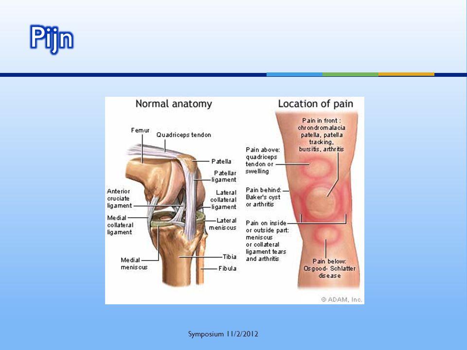 Pijn Symposium 11/2/2012