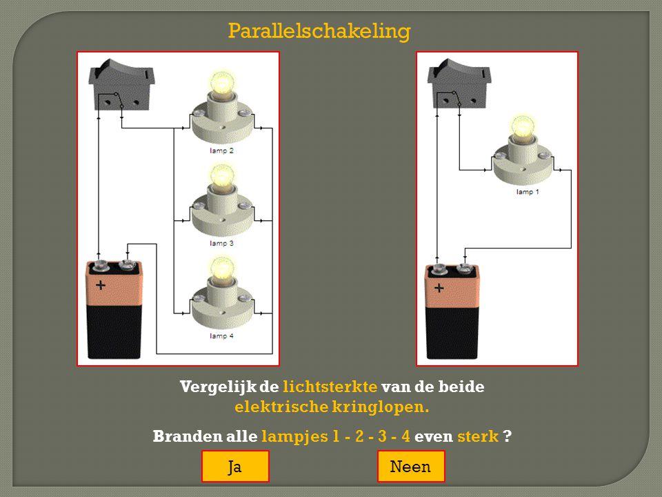 Parallelschakeling Vergelijk de lichtsterkte van de beide elektrische kringlopen. Branden alle lampjes 1 - 2 - 3 - 4 even sterk