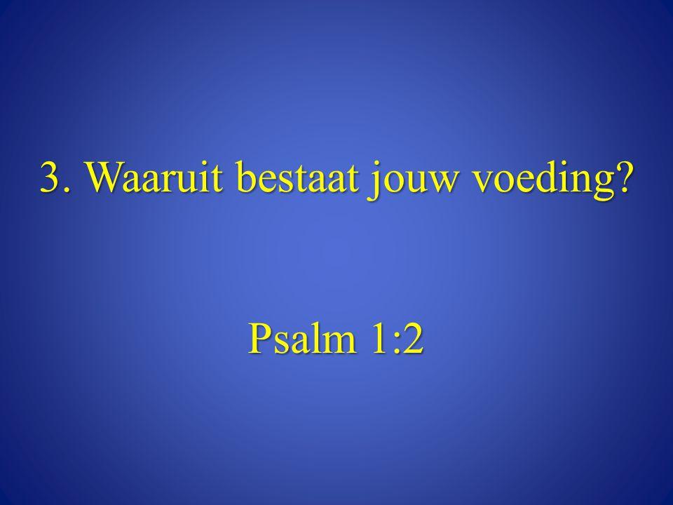 3. Waaruit bestaat jouw voeding Psalm 1:2