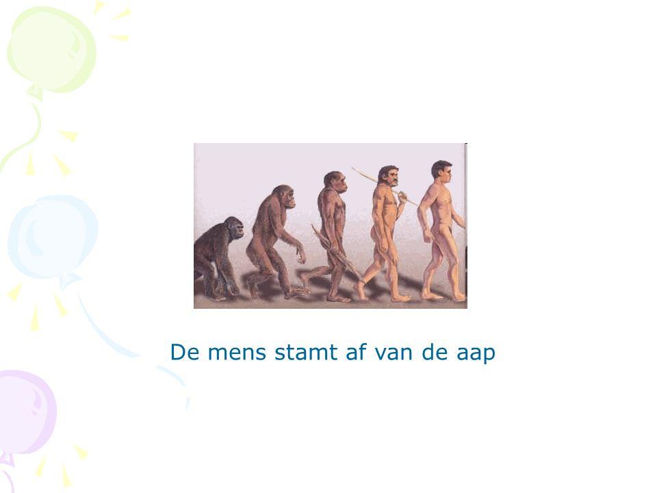 De mens stamt af van de aap