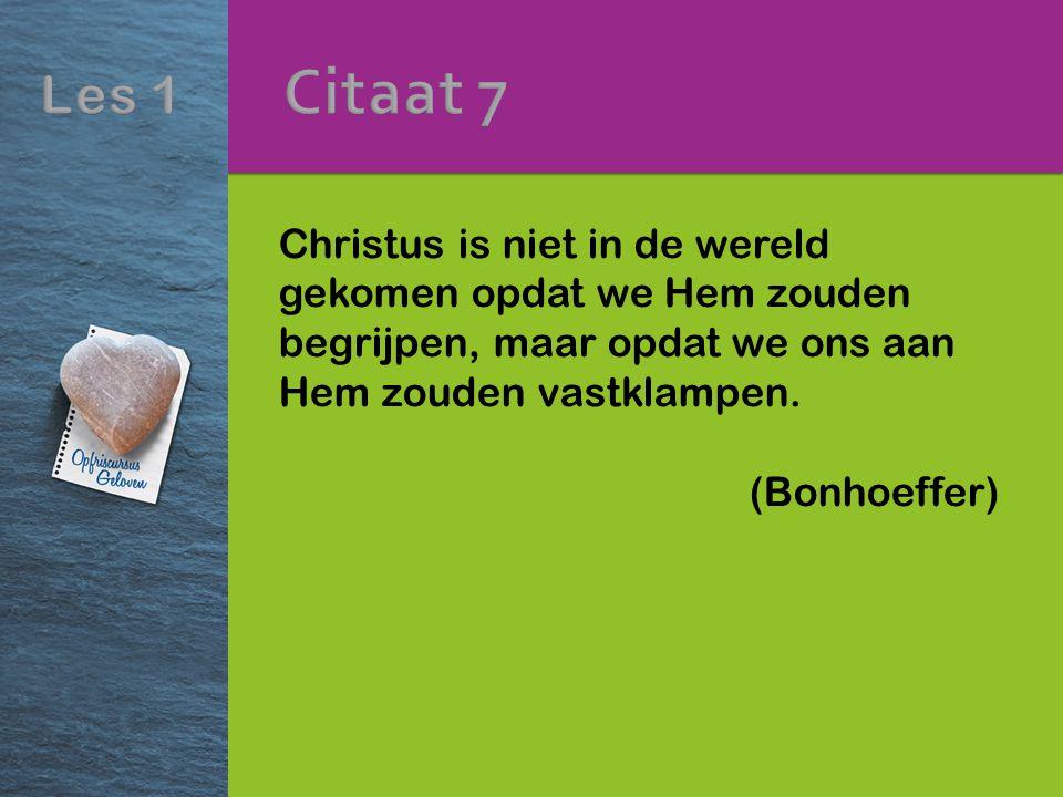 Citaat 7 Christus is niet in de wereld gekomen opdat we Hem zouden begrijpen, maar opdat we ons aan Hem zouden vastklampen.