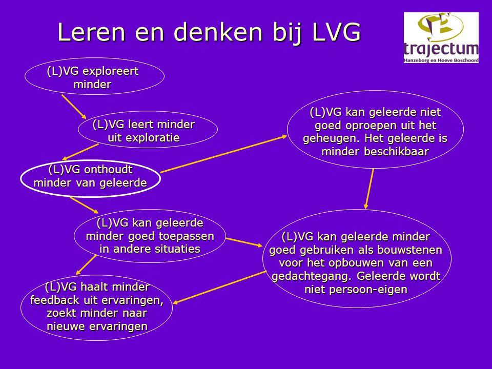 Leren en denken bij LVG (L)VG exploreert minder