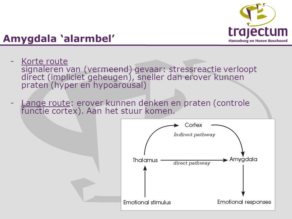 Amygdala 'alarmbel'