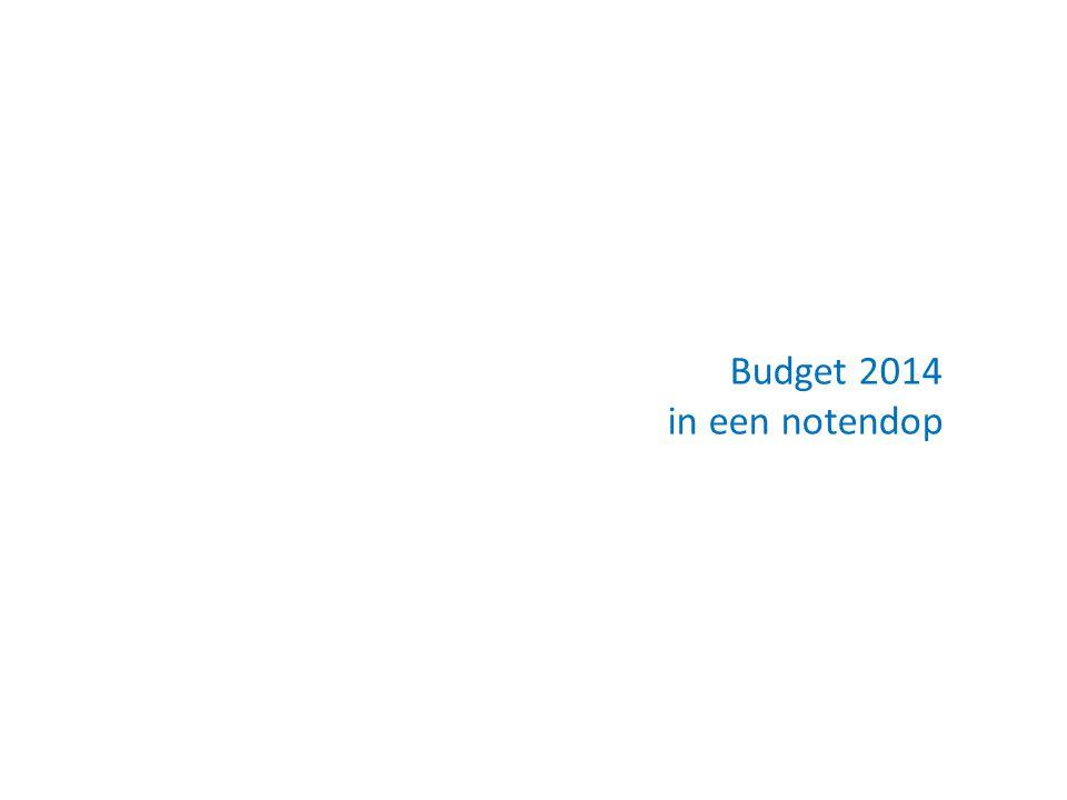 Budget 2014 in een notendop