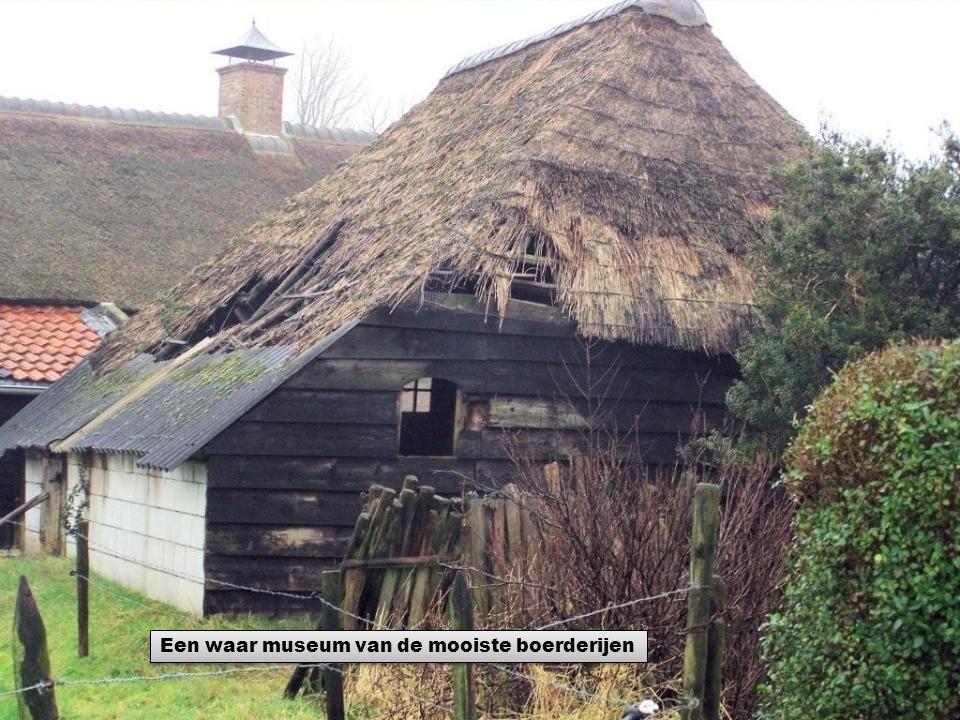 Een waar museum van de mooiste boerderijen