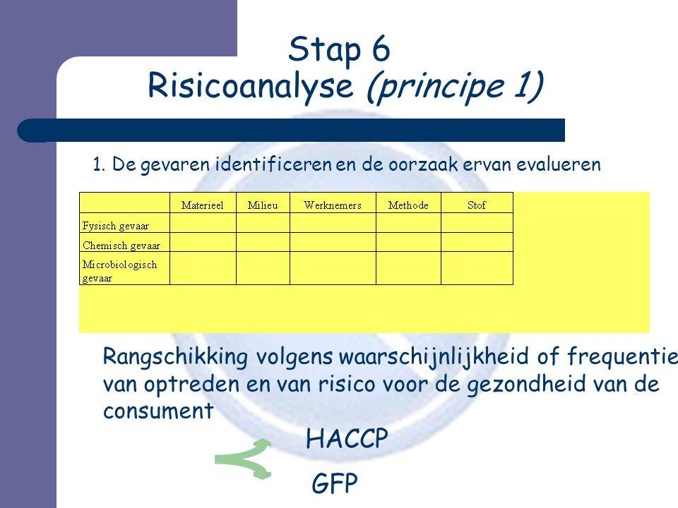 Stap 6 Risicoanalyse (principe 1)