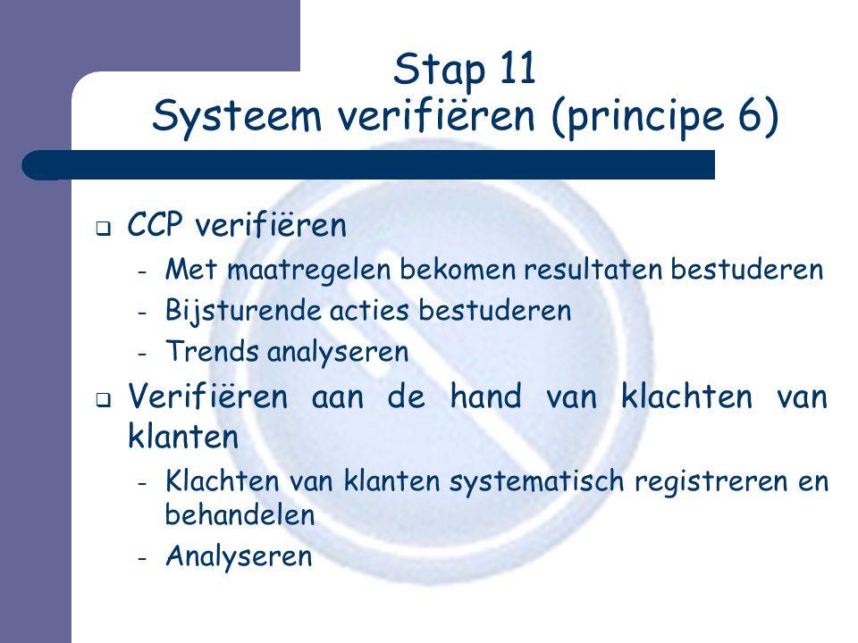 Stap 11 Systeem verifiëren (principe 6)