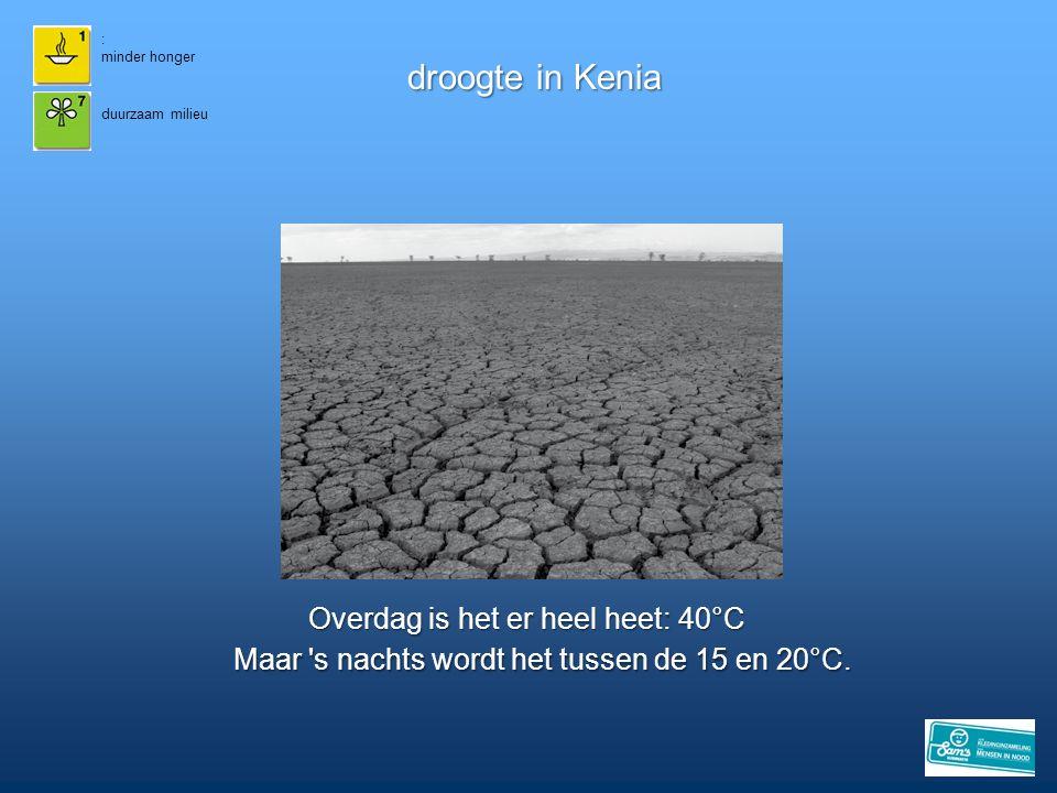 droogte in Kenia Overdag is het er heel heet: 40°C