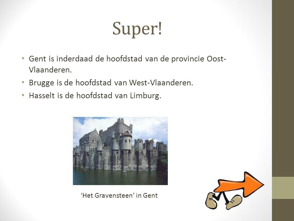 Super! Gent is inderdaad de hoofdstad van de provincie Oost-Vlaanderen. Brugge is de hoofdstad van West-Vlaanderen.