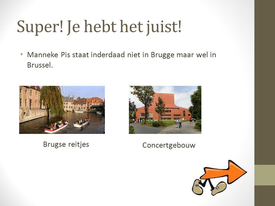 Super! Je hebt het juist! Manneke Pis staat inderdaad niet in Brugge maar wel in Brussel. Brugse reitjes.