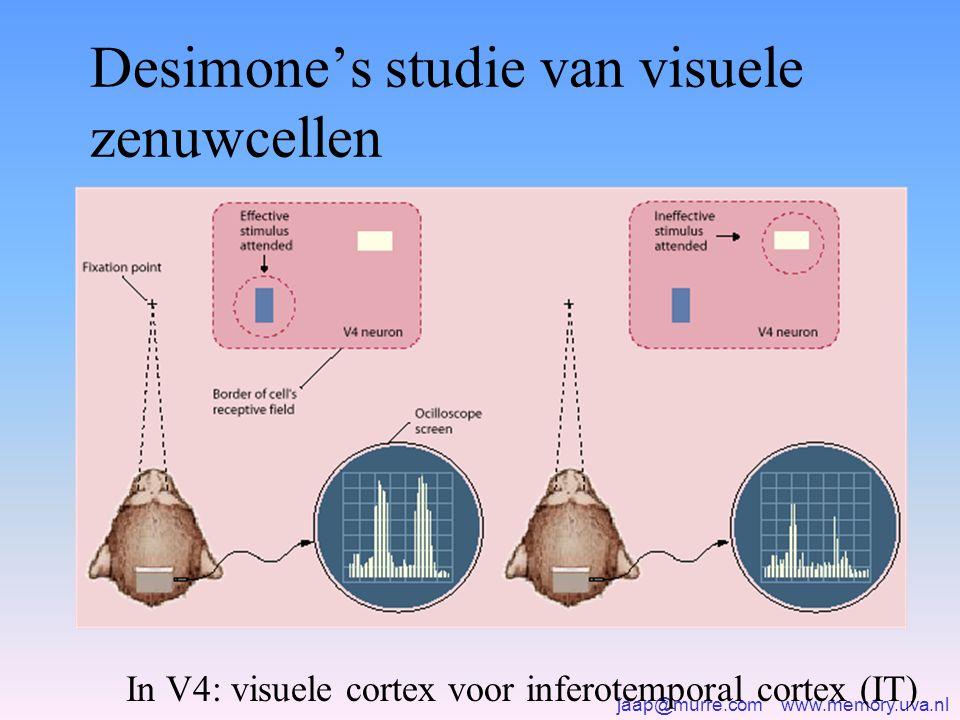 Desimone's studie van visuele zenuwcellen